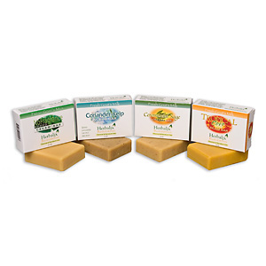 Goats Milk Soap Travelers Can Be 99% Germ Free with Herbalix Organic Soaps on Germ ridden Airplanes